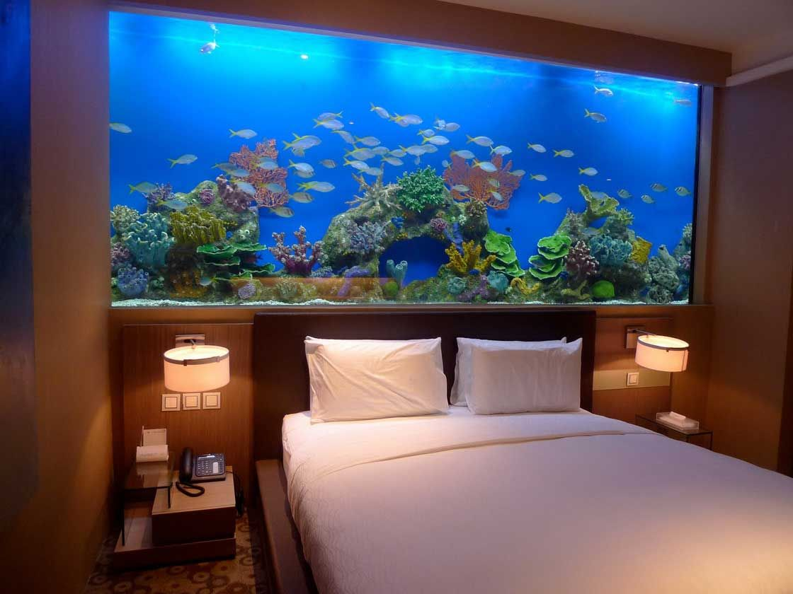 Captivating fish tank room divider for contemporary home ideas captivating fish tank room divider with