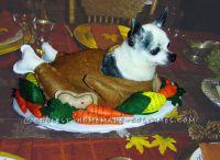 Funny Homemade Dog Costume: Gobble Til You Wobble ...