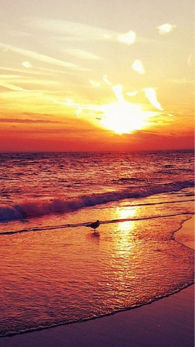 Nature-Sunset-Beach-Landscape-iphone-6-wallpaper-www.iphone6wallpaper.net_.jpg (1080×1920 ...