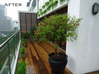 Modern Apartment Balcony Garden ideas for small spaces ...
