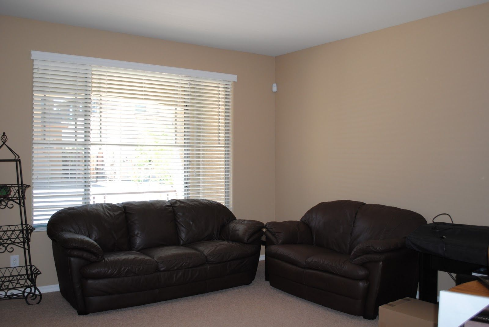 What Color Curtains With Blue Walls Brown Furniture Wall Color For Dark Furniture Can You Say Neutral