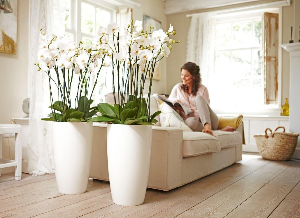 wohnzimmer hübsch design deko wohnzimmer uncategorized kühles ...