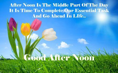 good after noon nature hd desktop wallpaper | greeting message image | Pinterest | Hd desktop