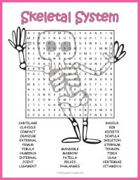 The 25+ best Skeletal system worksheet ideas on Pinterest ...