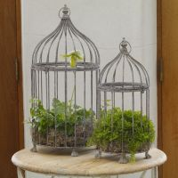 Decorated Bird Cages | Ornate Decorative Bird Cages ...