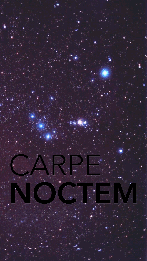 Phone Wallpapers Quotes Carpe Noctom Carpe Noctem Iphone 5 Wallpaper Createdbyme Iphone 5