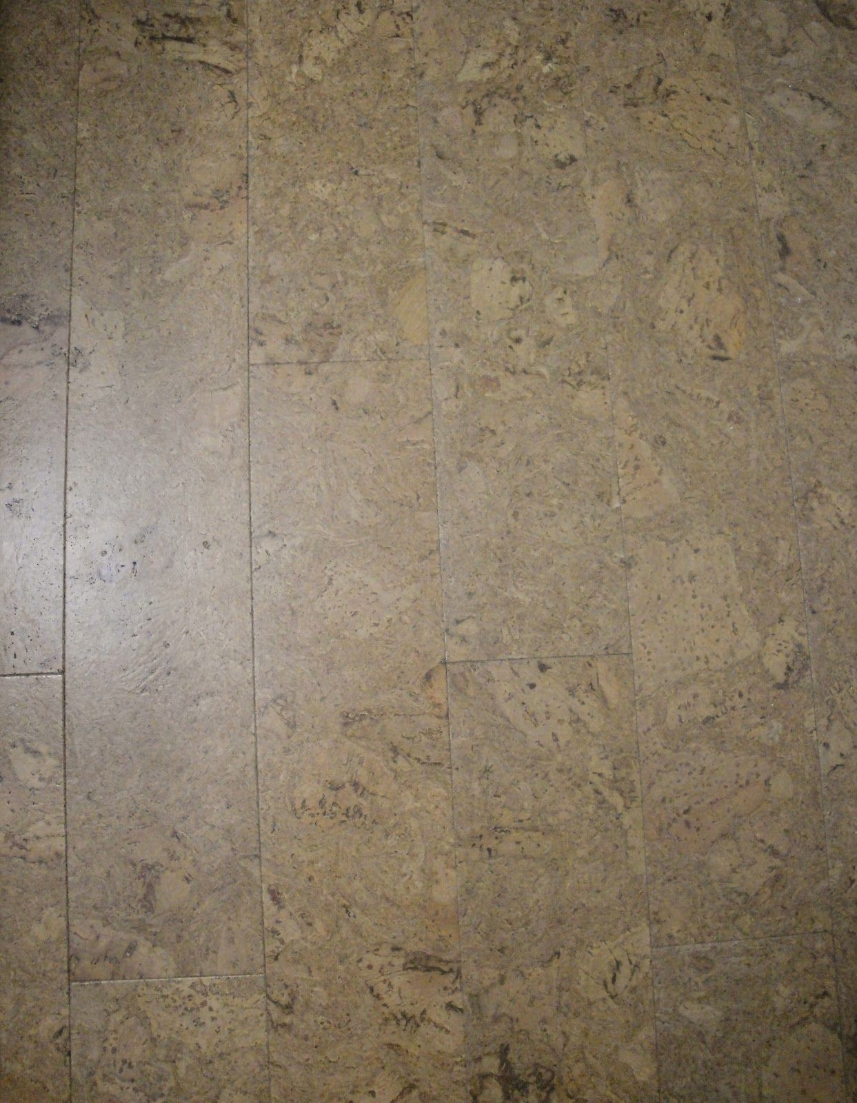 cork kitchen flooring Sage Cork Flooring Lowes our new kitchen mudroom powder room floor