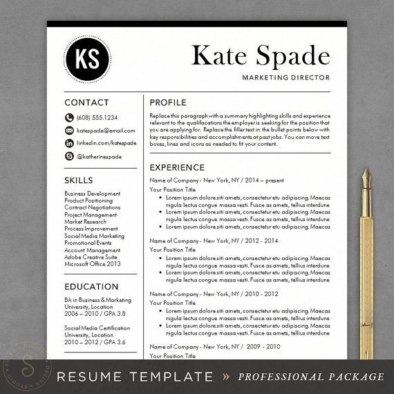 Professional Resume Template - CV Template for Word, Mac or PC - free template for resume