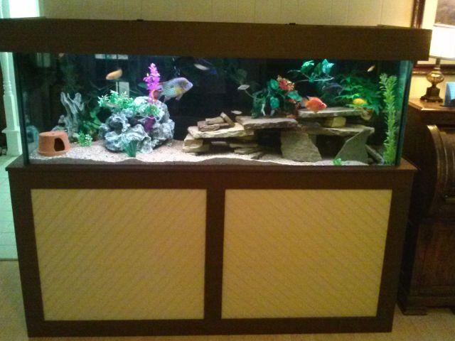 Homemade 180 Gallon Aquarium Stand | Fish & Aquascape | Pinterest