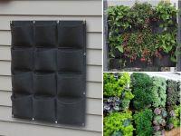 12 Pocket Outdoor Vertical Living Wall Planter | Pet ...
