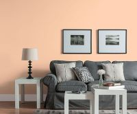 Color of the Month, July 2015: Bellini | Neutral, Living ...