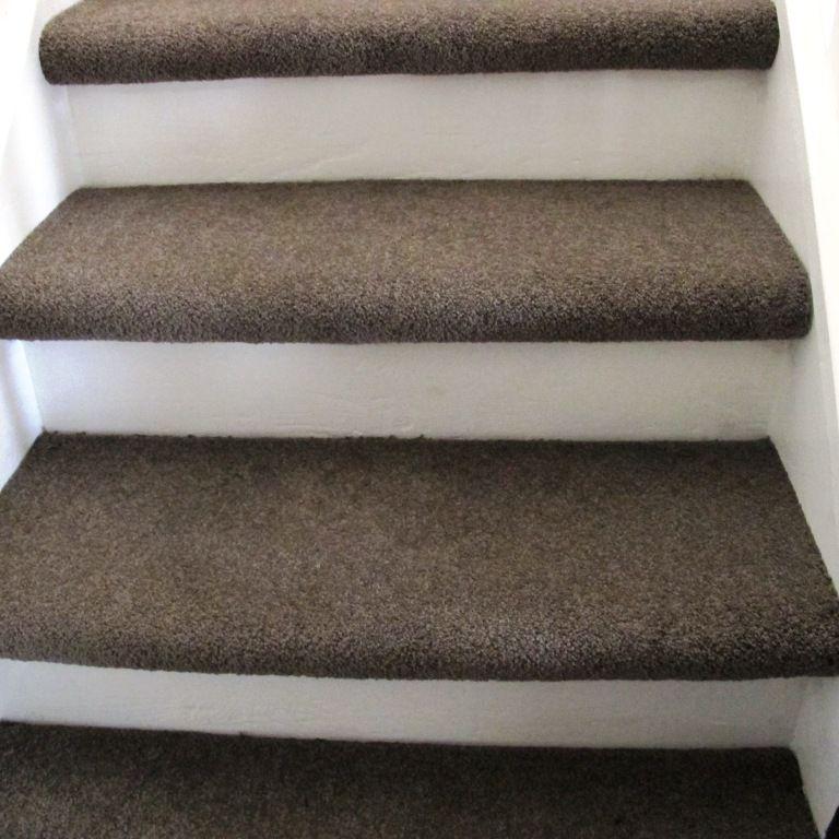 Carpet Treads Painted Riser Basement Pinterest