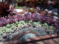 Cactus & Succulent Rock Garden Design | Gardening ...