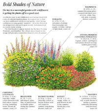 woodland flower bed plans   Found on todaysgardenideas.com ...