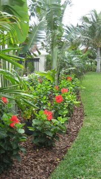 25 Tropical Outdoor Design Ideas | Flower stands, Hibiscus ...