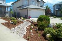 Xeriscaping | Xeriscape ideas for Michelle's front yard ...