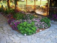 shade tree flower beds | Small Backyard Garden Ideas ...