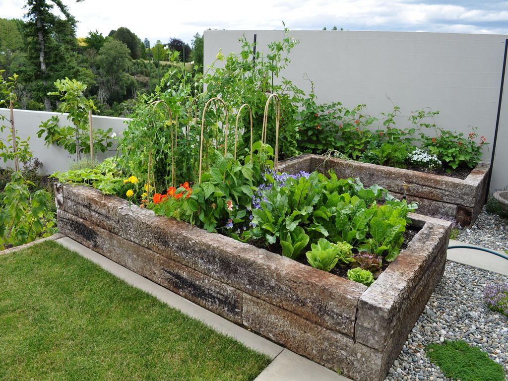A picture from the gallery how to make your home vegetable garden look beautiful