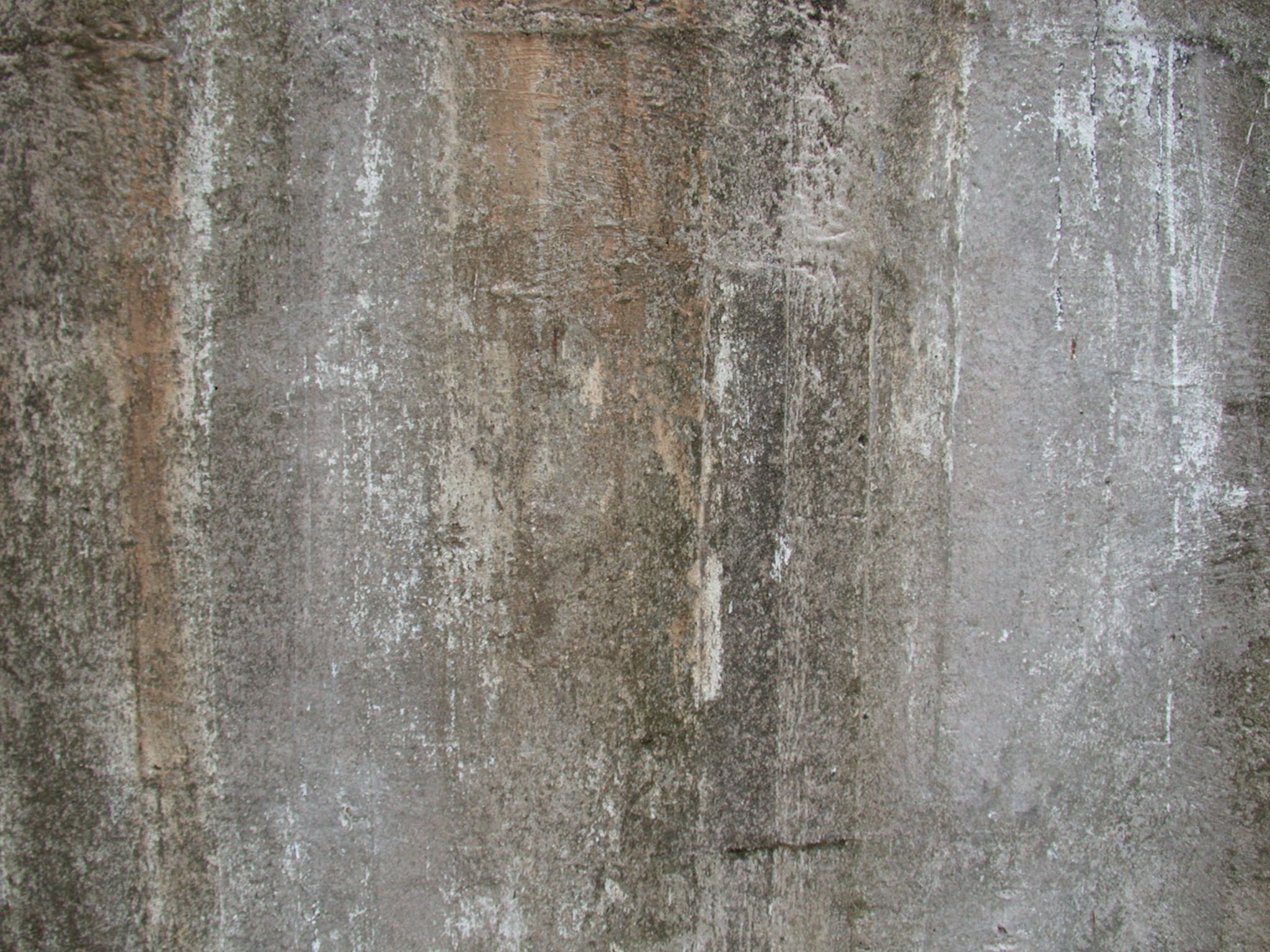 Texturing Concrete Walls Pin By Rotten Pictures On Rotten Walls Pinterest Wall