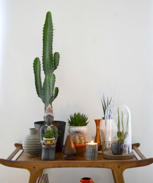 grose wohnzimmer pflanzen | hairstylish.info - Grose Wohnzimmer Pflanzen