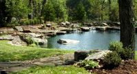 Natural Swimming Pool & Pond Photo Gallery - Design ...