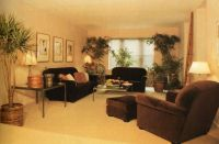 Image result for 1980s living room