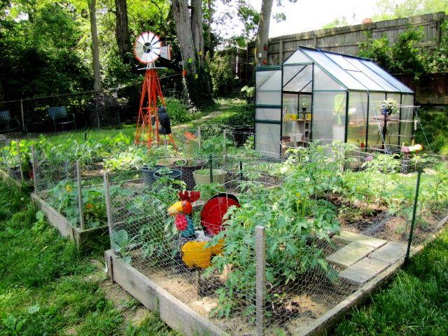 great layout idea for a small urban farm