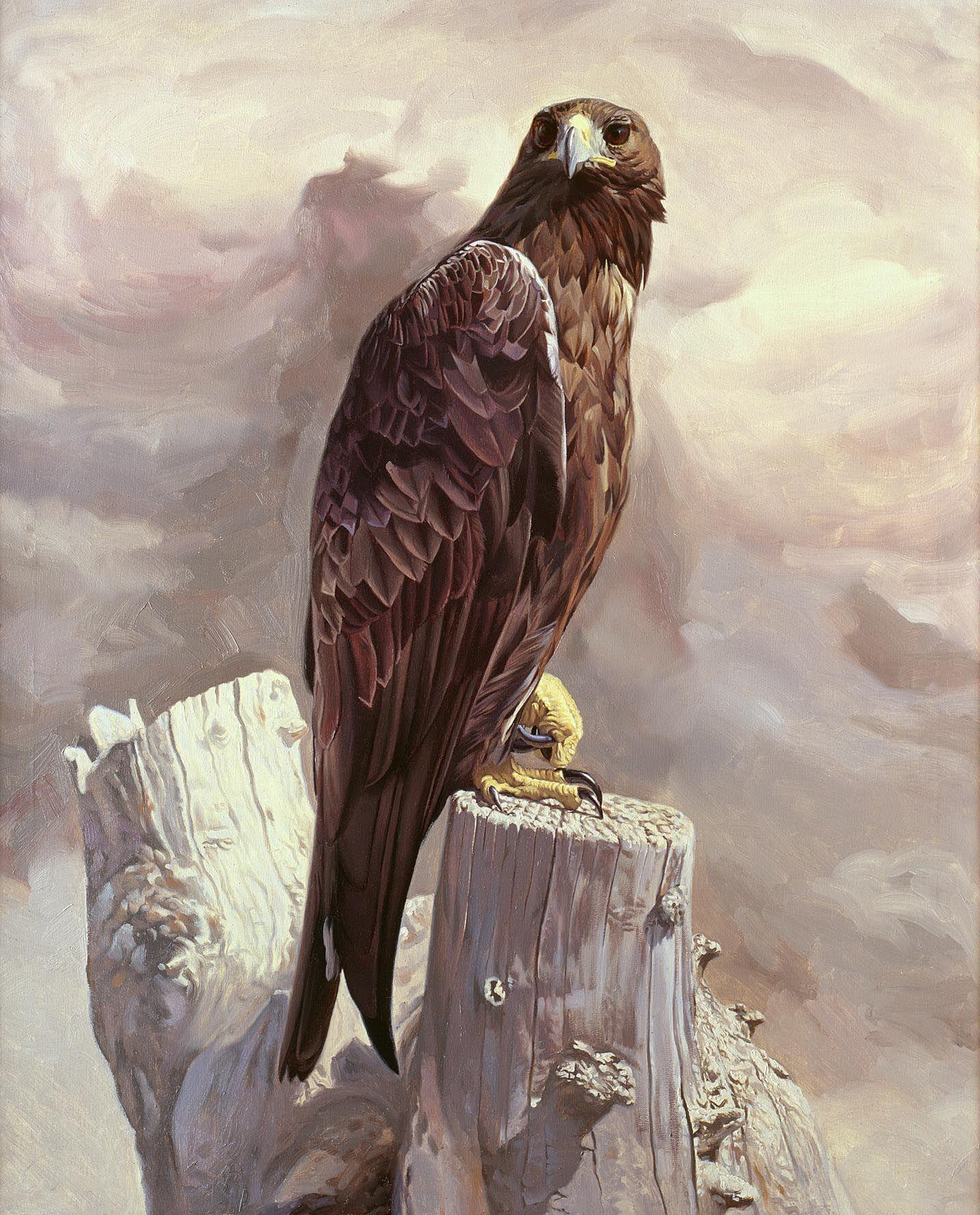 Mystical Creatures In The Fall Wallpaper Nerea Golden Eagle Portrait Quot Wildlife Art Of Manuel