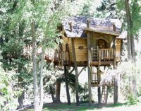Cool Tree Houses | Kids Tree House Designs, Small And ...
