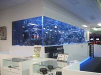Large Size Saltwater Wall Mounted Aquarium In The Office ...