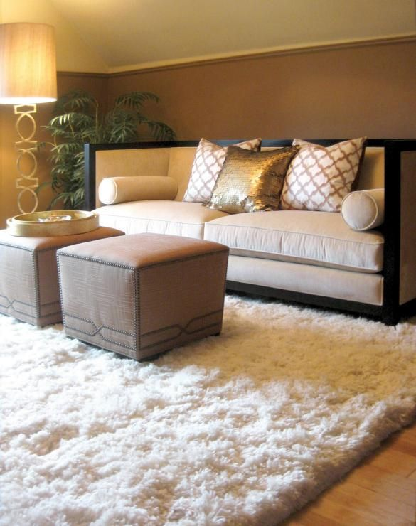 B M Valley Forge Brown, Living room accent walls ? decorating - living room shag rug