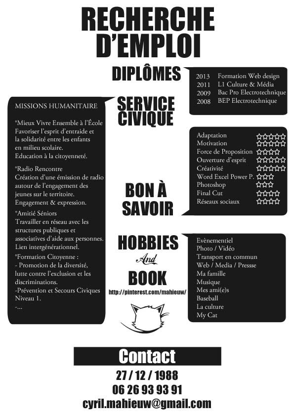 cv style pour emploi marketing digital