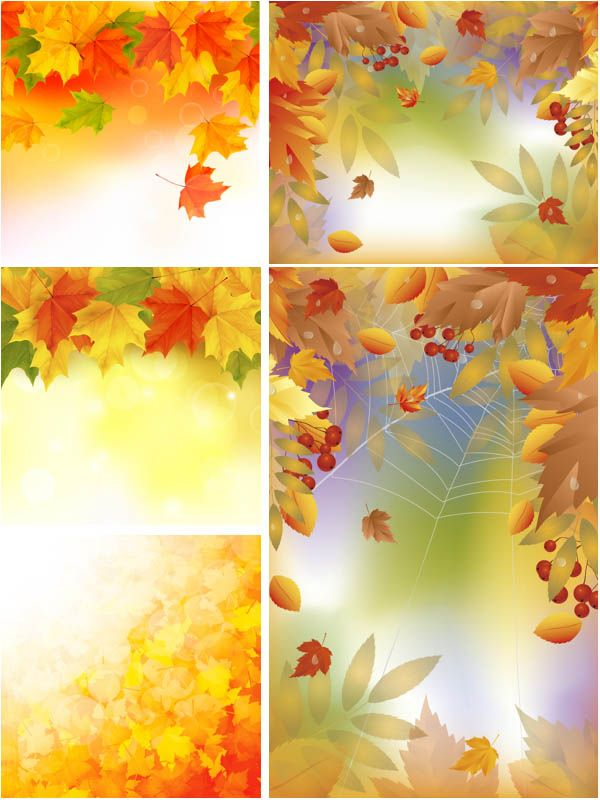 Fall Give Thanks Wallpaper Set Of 5 Vector Fall Leaves Backgrounds With Fall Leaves