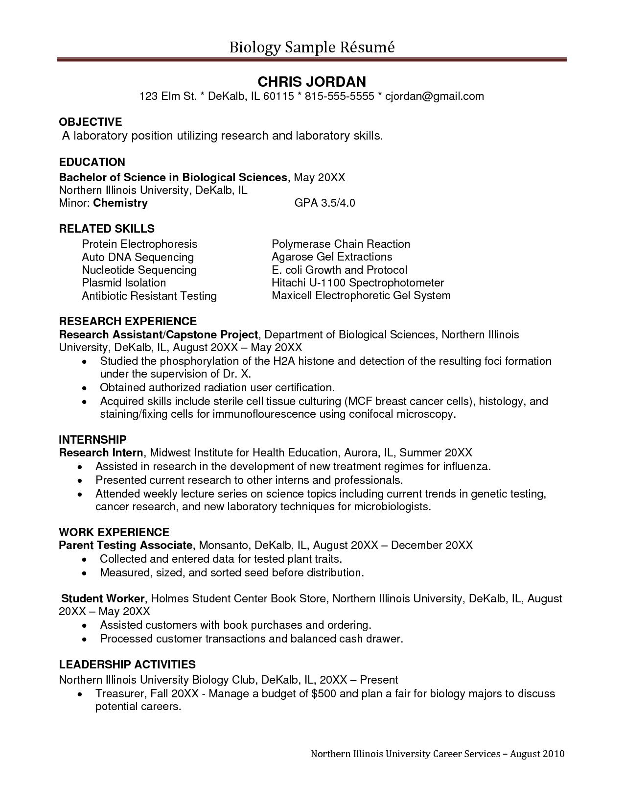 undergrad resume examples