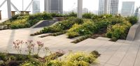 Bevis Marks Roof Terrace -London by Townshend Landscape ...