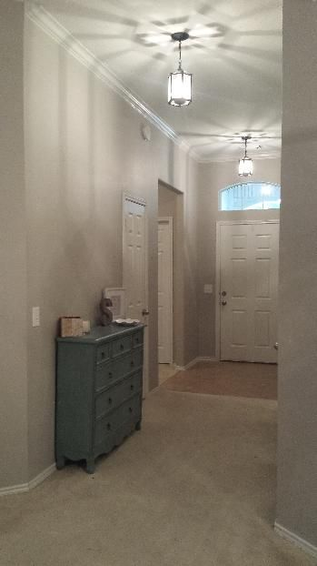 Agreeable Gray Vs Revere Pewter Snowbound Paint Color Sw 7004 By Sherwin-williams. View