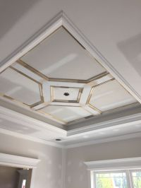 Custom craftsman style home. Tray ceiling. Dining room ...