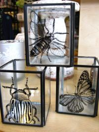 Insect Candle Holders | For the Home | Pinterest | Insects ...