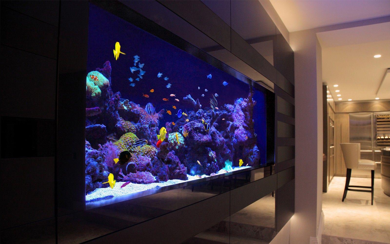 Fish aquarium buy online - Fish Aquarium Buy Online