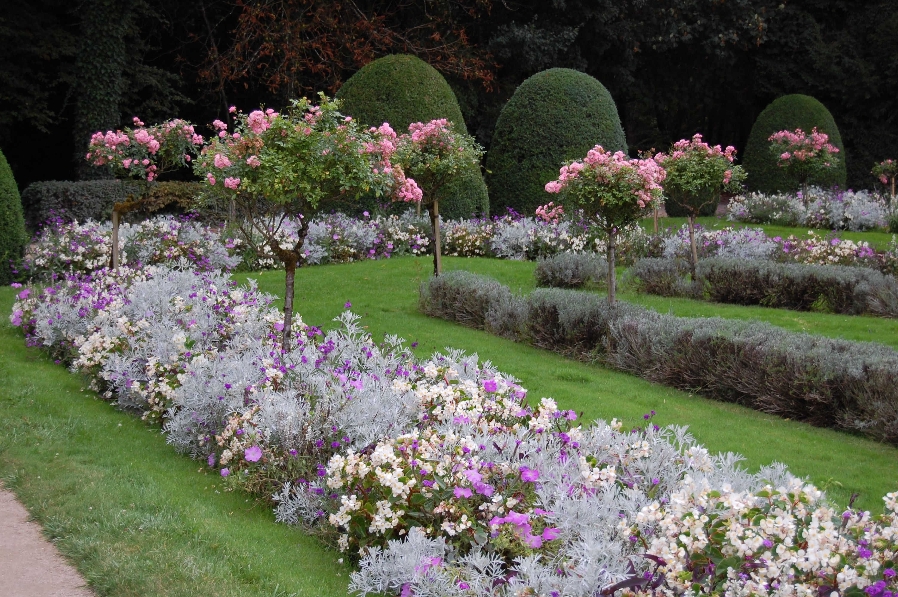 Rose garden ideas pictures -  Rose Garden Landscaping Ideas Google Search Download