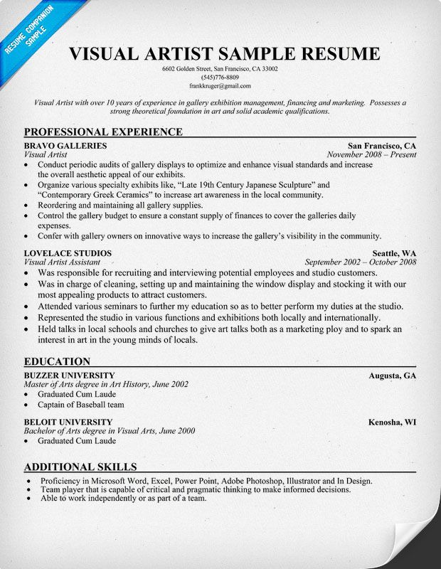 Visual Artist Resume (resumecompanion) Resume Samples Across - art resume template
