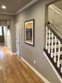 Sw tony taupe. Ceiling in SW brilliant beige | Build/Flip ...