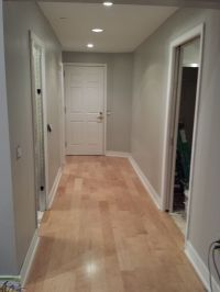 """Engineered maple flooring with """"Dolphin fin"""" gray Behr ..."""