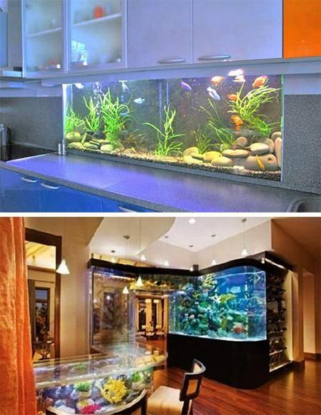 35 Unusual Aquariums and Custom Tropical Fish Tanks for