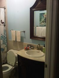 small bathroom no window paint color - Google Search ...