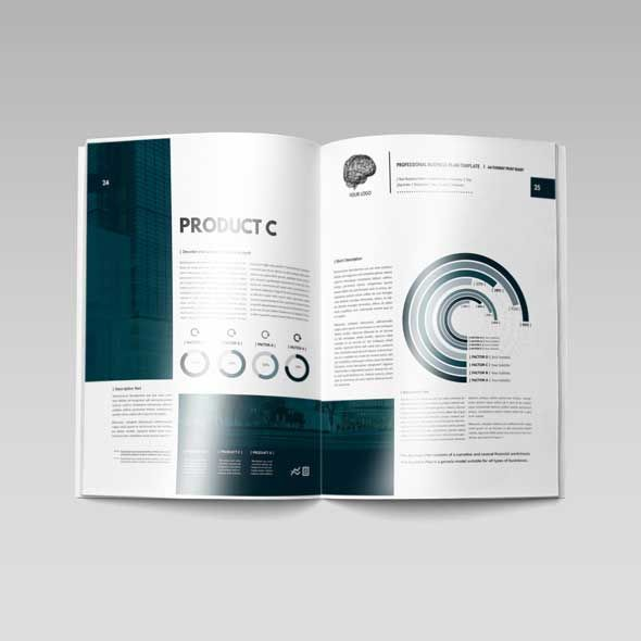 Professional Business Plan Template Doküman Pinterest - professional business plan