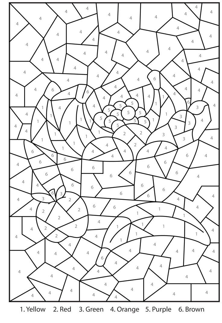 Free printable color by number coloring pages for adults