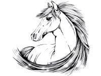indian horse tattoo designs | Beautiful horse drawing ...