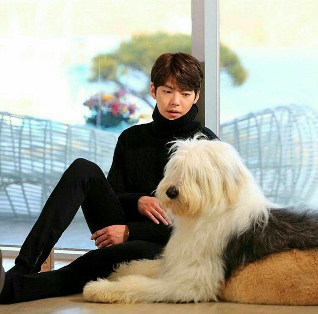 Pororo Cute Wallpaper Kim Woo Bin And Pororo Ep13 Uncontrollably Fond Kim Woo