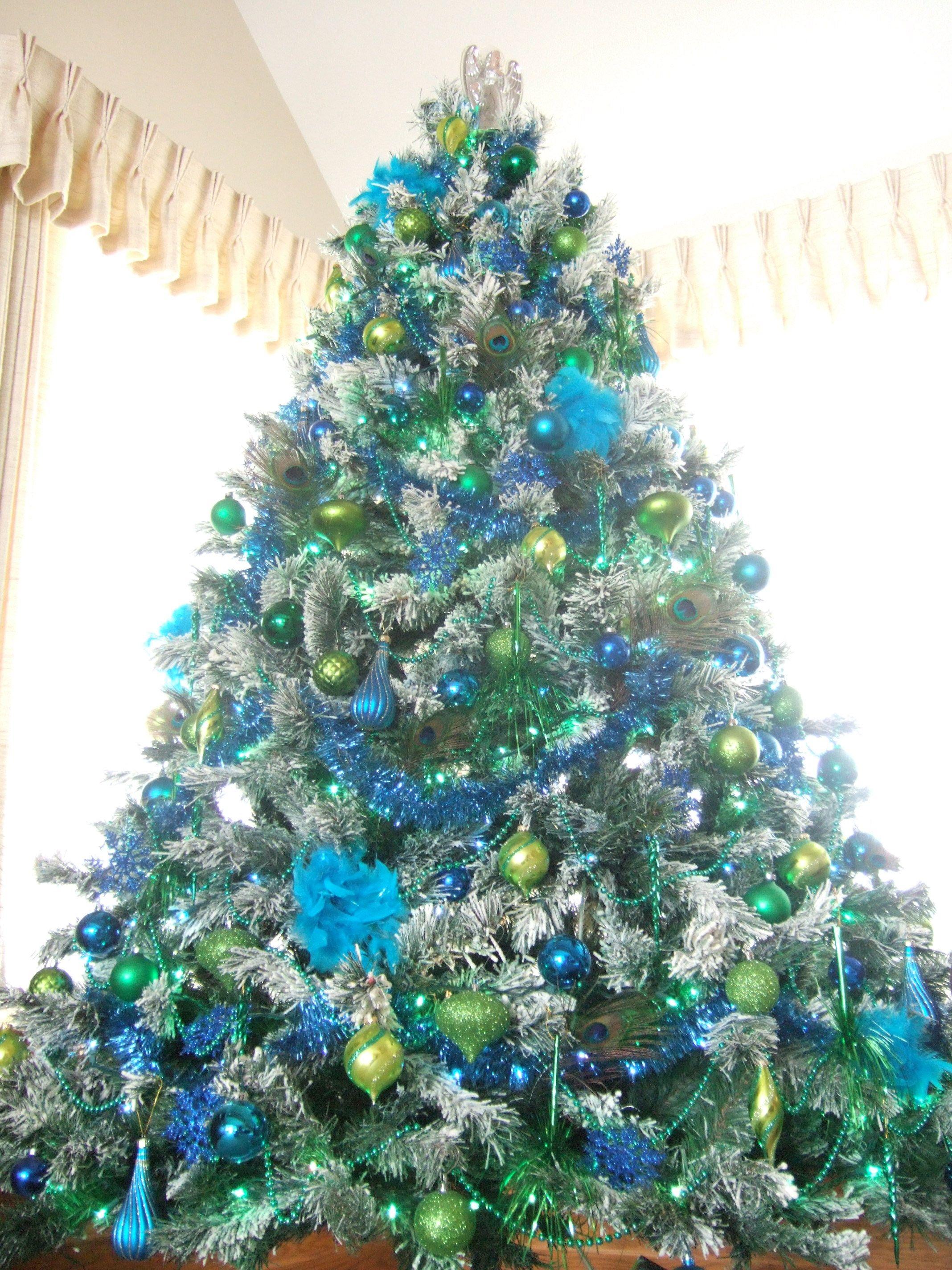 Closeup tree peacock christmas blue green